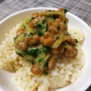 ブロッコリースプライトたっぷり! 納豆ご飯