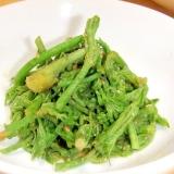 タラの芽の酢味噌和え