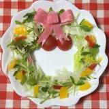 クリスマス用に!リース生野菜サラダ