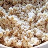 普通の麹から増やして作る玄米麹