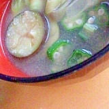 夏野菜たっぷり味噌汁