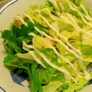 白菜と水菜の簡単サラダ