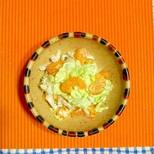 白菜とみかんのヨーグルトサラダ♪
