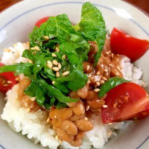 青じそ、トマトの納豆ご飯