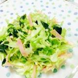 血糖値を下げよう〜キャベツのコールスローサラダ