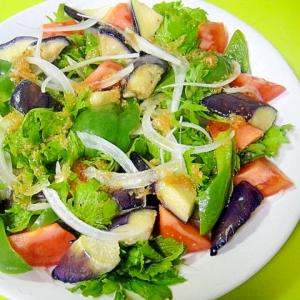 素揚げ茄子とピーマンわさび菜のサラダ