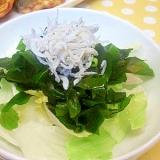 レタス&しらすのサラダ