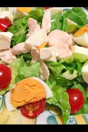 とりささみとゆで卵のサラダ