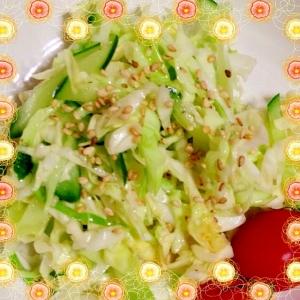 キャベツとキュウリの簡単サラダ