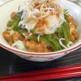 風邪に!納豆とめかぶで、ネバトロ♪しらすおろし丼