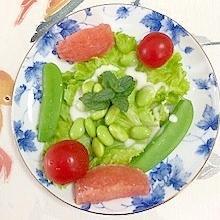 フリルレタス 、枝豆、ミニトマトのサラダ
