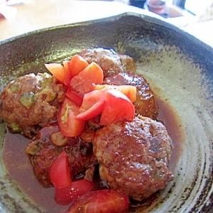 トマトゴーヤ葱バーグ