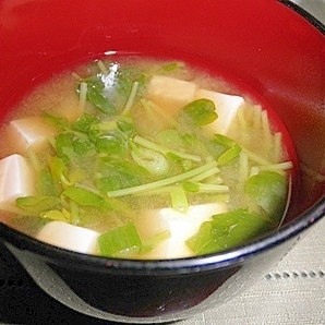豆苗と豆腐の味噌汁