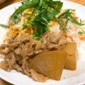 こってり、厚揚げと大根と豚バラ肉の煮物