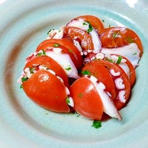 パセリのドレッシングで食べるタコとトマトのサラダ