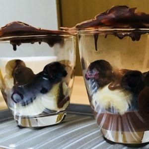 チョコソースでチョコレートが溶ける オペラグラス