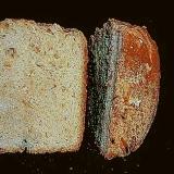 長熟オニオンパン