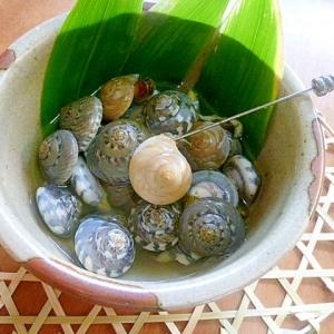 貝殻模様が綺麗、茹でながらみ