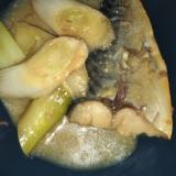 サバと白ネギの味噌煮(≧▽≦)