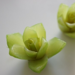 小松菜の根で作る花飾り