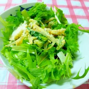 小松菜と水菜のアジアンサラダ