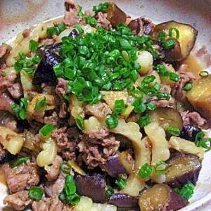 ゴーヤとお肉の炒め煮
