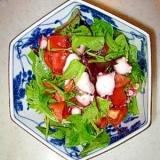 タコとトマトの簡単サラダ。
