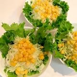 まる生ポン酢で☆彩り野菜のポン酢サラダ