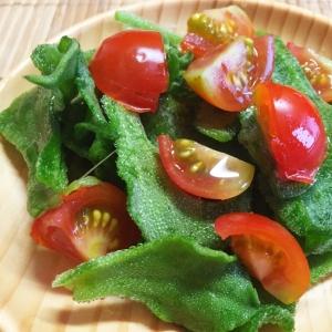 アイスプラントとミニトマトのサラダ