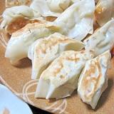 ヘルシー✿おからと豆腐のベジ餃子