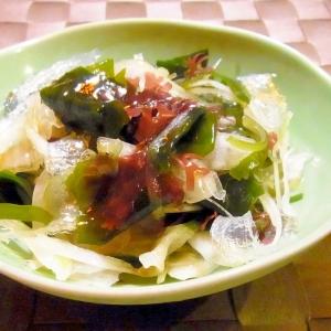 海藻玉ねぎサラダ