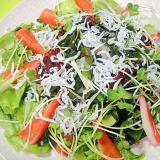 しらすと海藻カニカマの和風サラダ