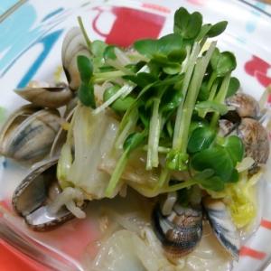 あさりと白菜、モヤシの炒め物