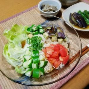 こんにゃく麺・夏野菜そうめん
