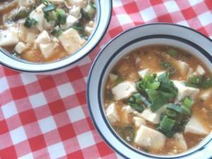 市販の素でも野菜をプラス+ ねぎ麻婆豆腐