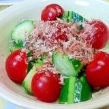 きゅうり&ミニトマトのサラダ
