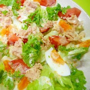ゆで卵とツナレタスのピーナッツドレッシングサラダ