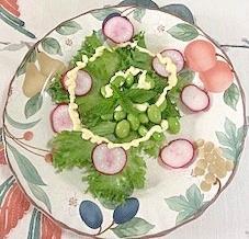 リーフレタス 、枝豆、ラディッシュのサラダ