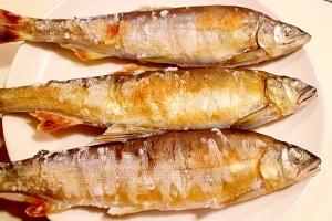 【コツ】鮎の塩焼き・グリルで美味しい鮎の焼き方