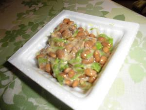 タラの芽納豆