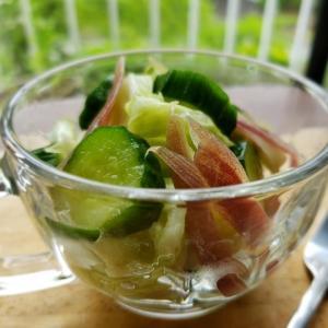 【独居自炊】きゅうりとキャベツの昆布茶サラダ