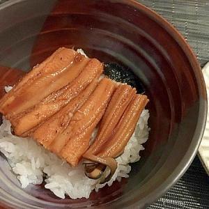 炙り煮穴子丼