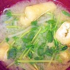 モヤシと豆苗のお味噌汁