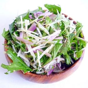 赤水菜と大根の胡麻サラダ
