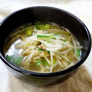 挽き肉ともやしのスープ