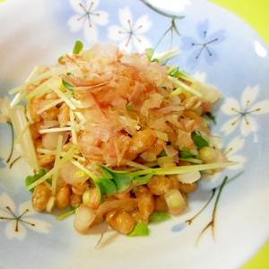 みょうが竹とカイワレ大根のおかか納豆