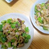 豚肉と生姜とピーマンときくらげニンジン葱グリル