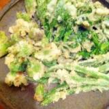 ふきのとう、菜の花、いんげん豆の天婦羅