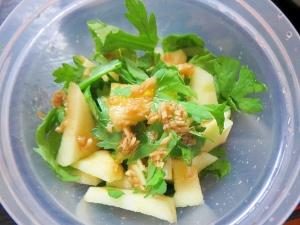 春菊とリンゴの酢生姜サラダ