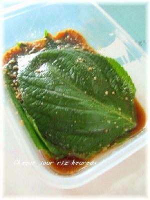 えごまの葉のヤンニョム漬けでご飯がすすむ!